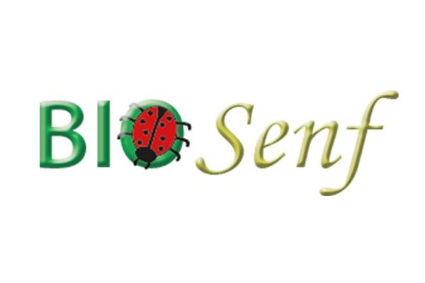 web updates kmu GmbH-wuk-WordPress und SEO Agentur - Kunden Bio Senf