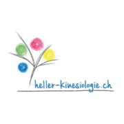 web updates kmu GmbH-wuk-WordPress und SEO Agentur - heller-kinesiologie-logo