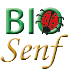 web updates kmu GmbH-wuk-WordPress und SEO Agentur - Bio Senf